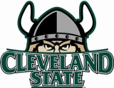 csuviking-logo-large